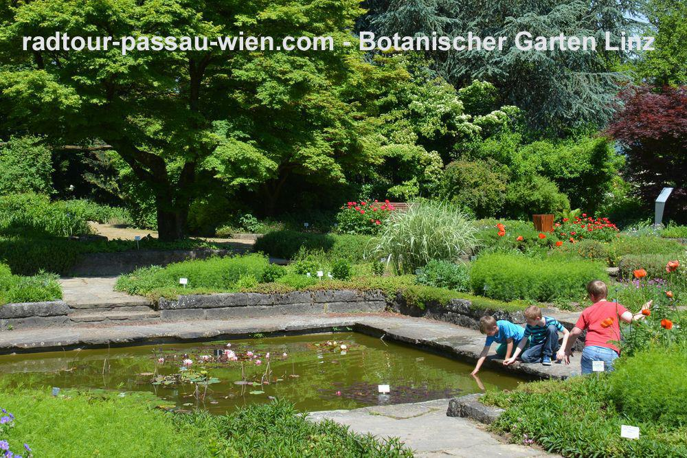 Le jardin botanique de linz for Le jardin botanique camping